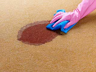 Clean spills and stains on the carpet | Pasadena